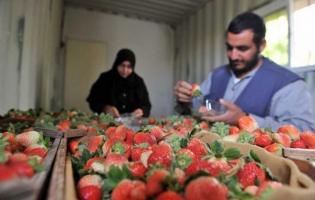 Foto UNRWA. La vida bajo el bloqueo (4)