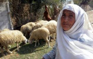 Foto UNRWA. Retratos de empoderamiento (1)