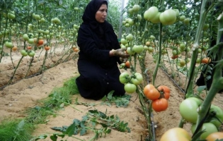 Foto UNRWA. Retratos de empoderamiento (9)